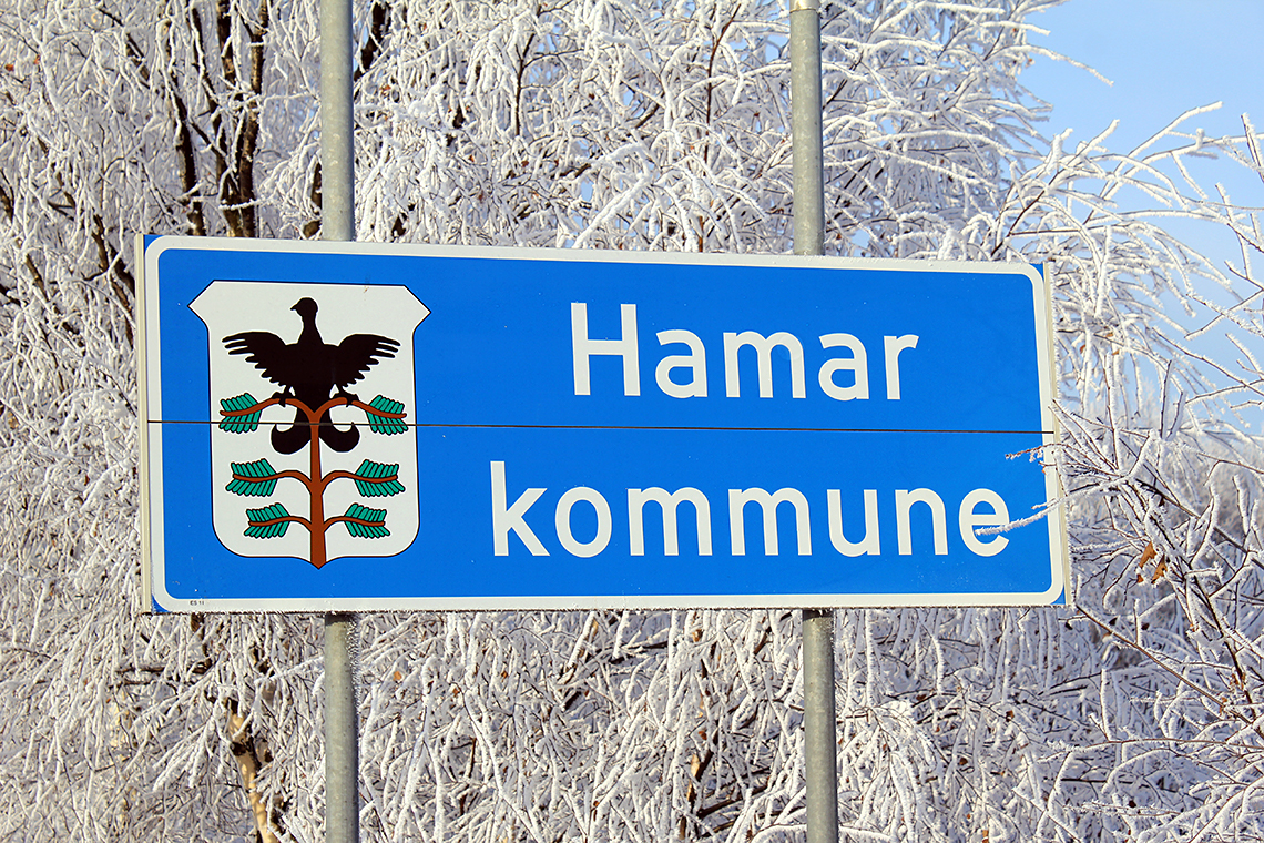 Hamar kommune skilt med byvåpen